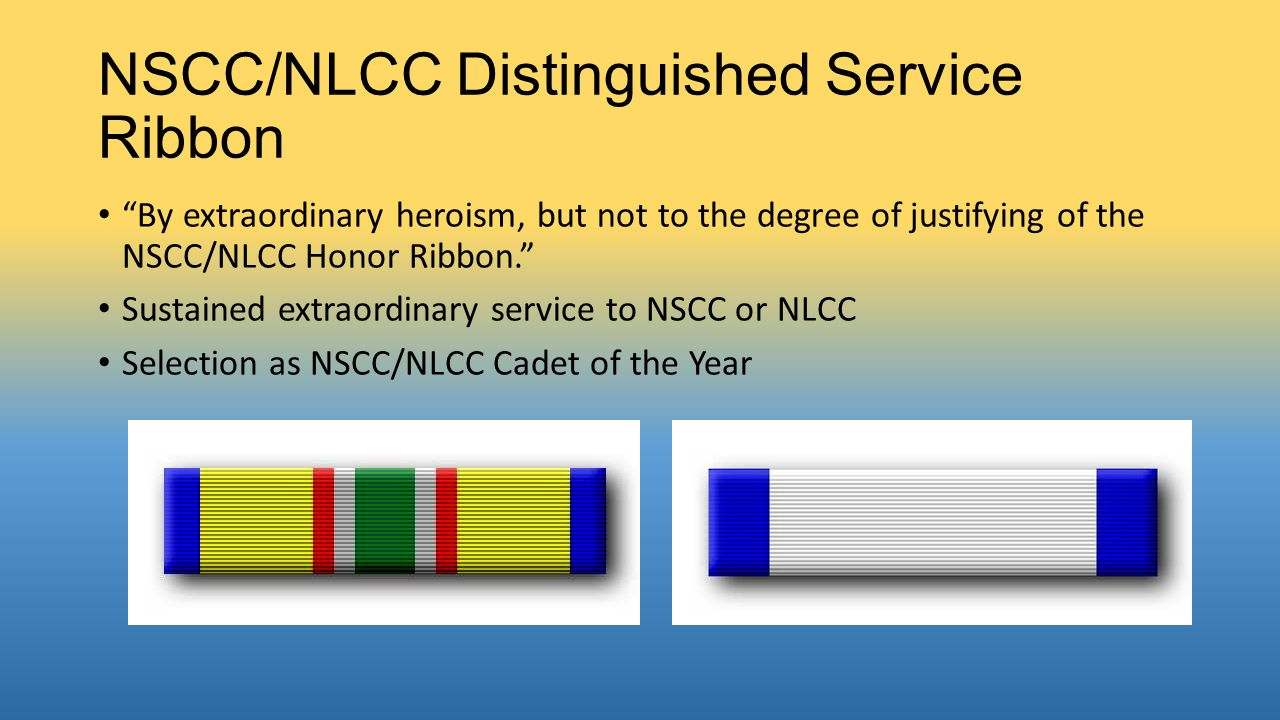 NSCC/NLCC Distinguished Service Ribbon