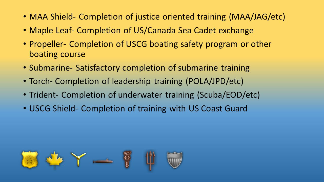 MAA Shield- Completion of justice oriented training (MAA/JAG/etc)