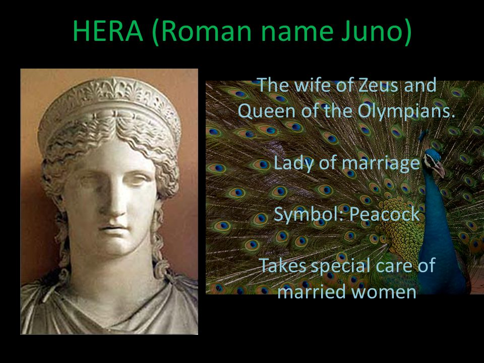 HERA (Roman name Juno) The wife of Zeus and Queen of the Olympians.