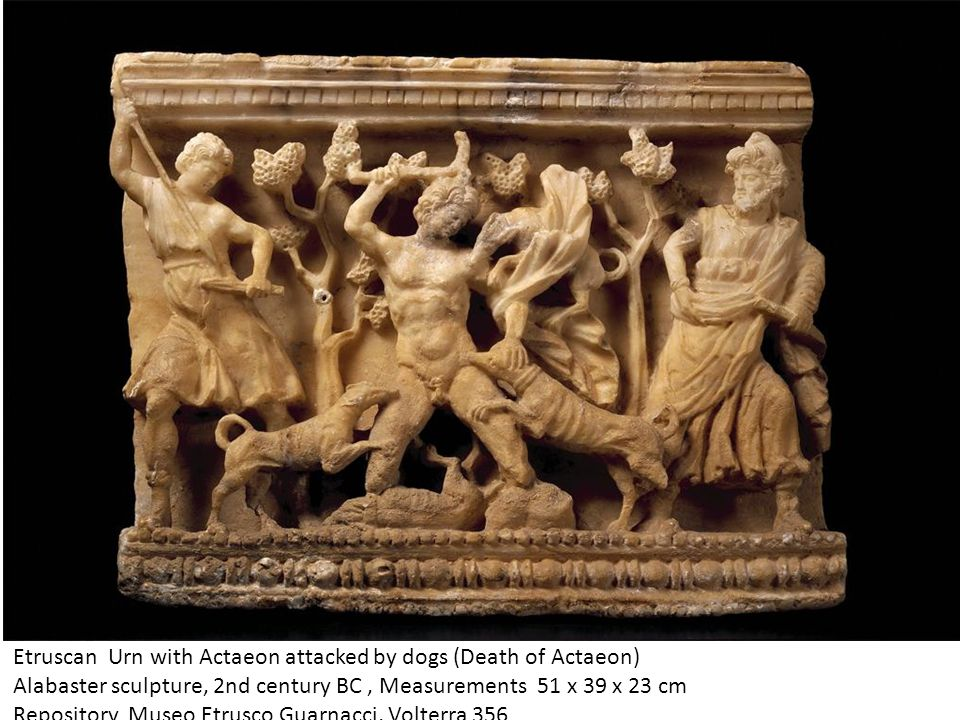 Etruscan Urn with Actaeon attacked by dogs (Death of Actaeon)