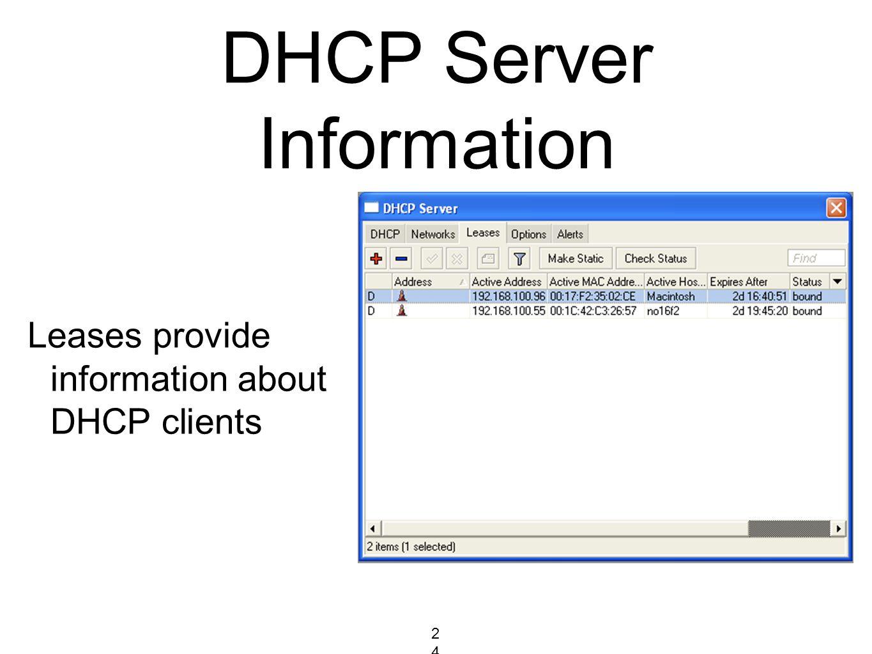 DHCP Server Information