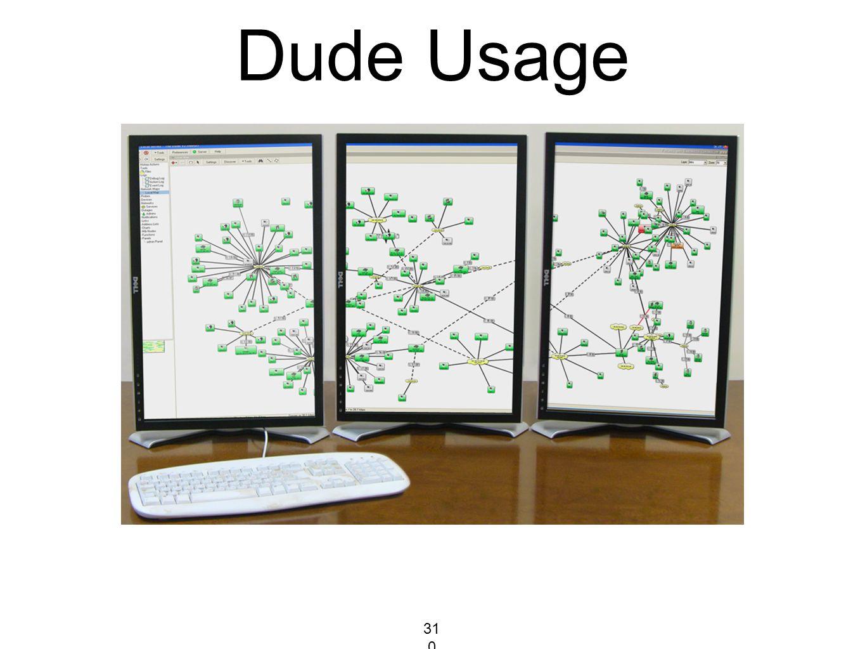Dude Usage 310310