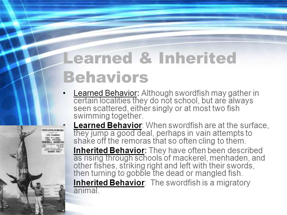 Learned & Inherited Behaviors