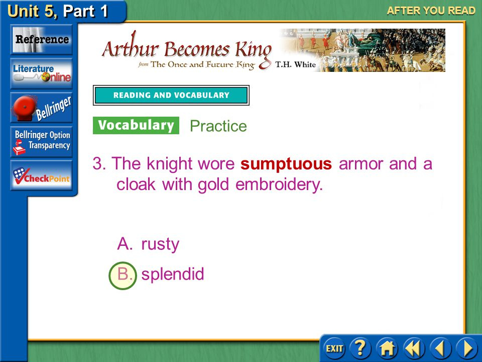 3. The knight wore sumptuous armor and a cloak with gold embroidery.
