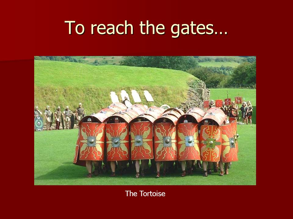 To reach the gates… The Tortoise