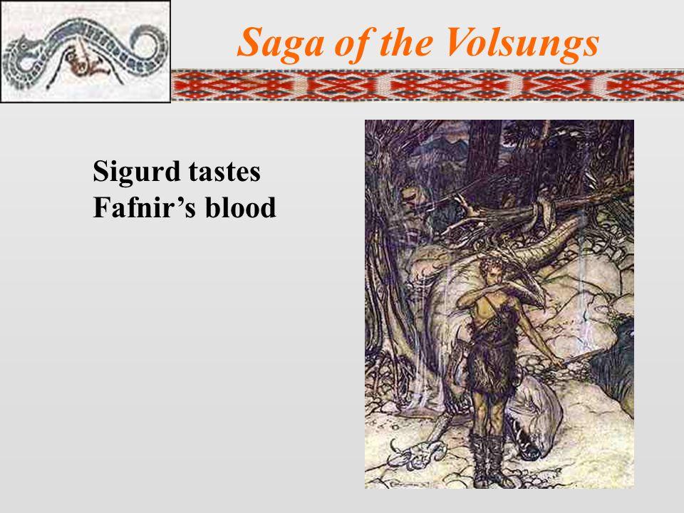 Saga of the Volsungs Sigurd tastes Fafnir's blood