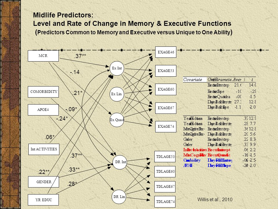 Level and Rate of Change in Memory & Executive Functions