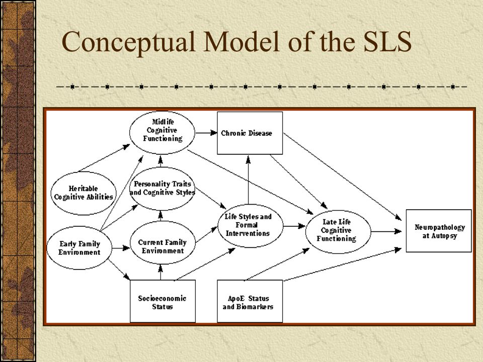 Conceptual Model of the SLS