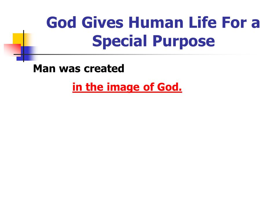 God Gives Human Life For a Special Purpose