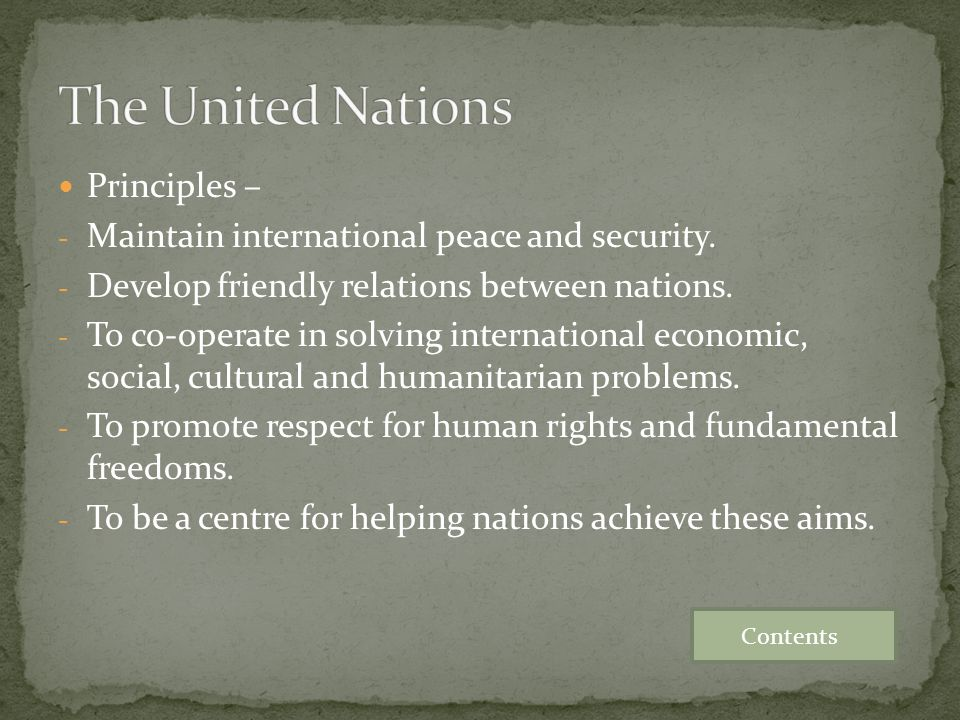 The United Nations Principles –