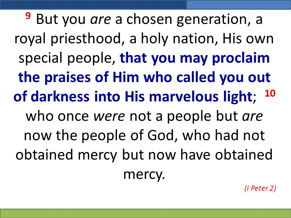 9 But you are a chosen generation, a royal priesthood, a holy nation, His own special people, that you may proclaim the praises of Him who called you out of darkness into His marvelous light; 10 who once were not a people but are now the people of God, who had not obtained mercy but now have obtained mercy.