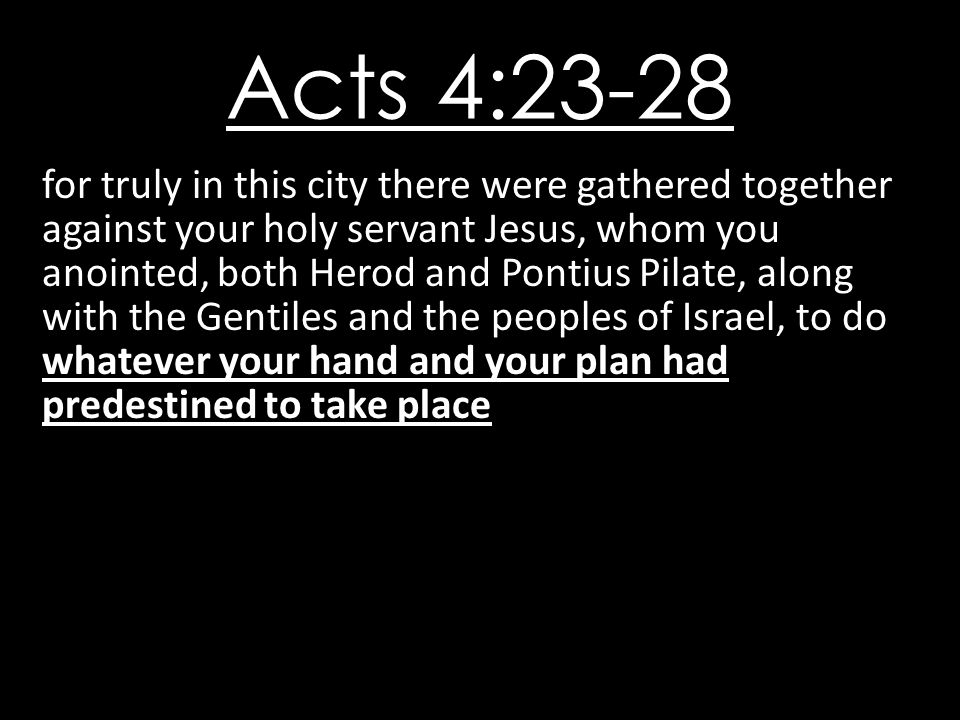 Acts 4:23-28