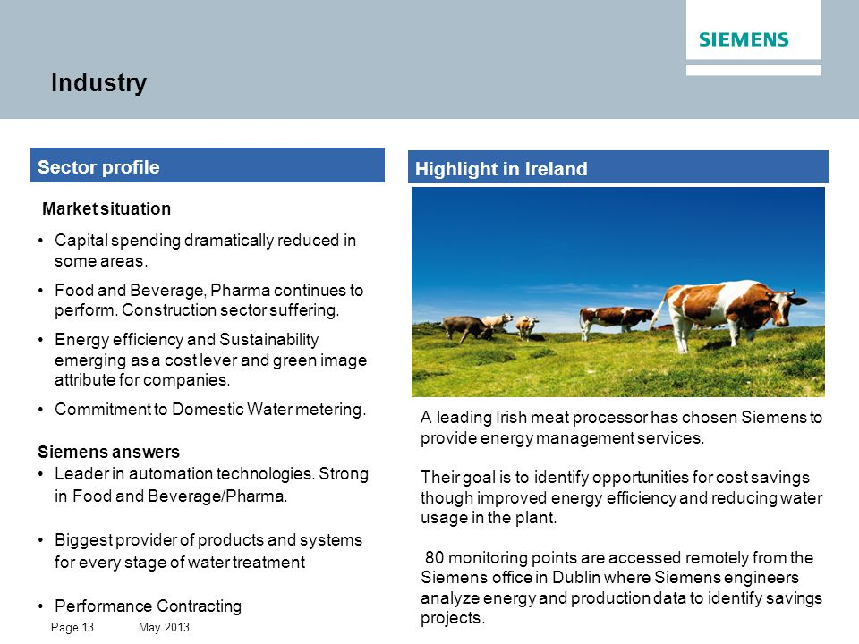 Industry Sector profile Highlight in Ireland Market situation