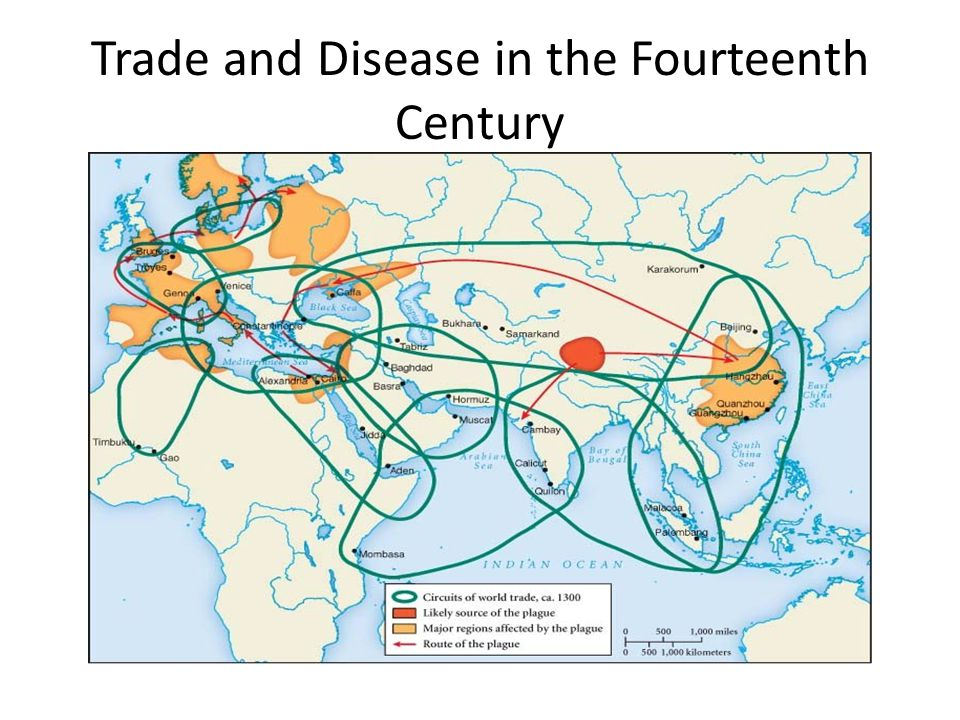 Trade and Disease in the Fourteenth Century