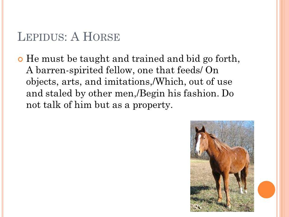 Lepidus: A Horse