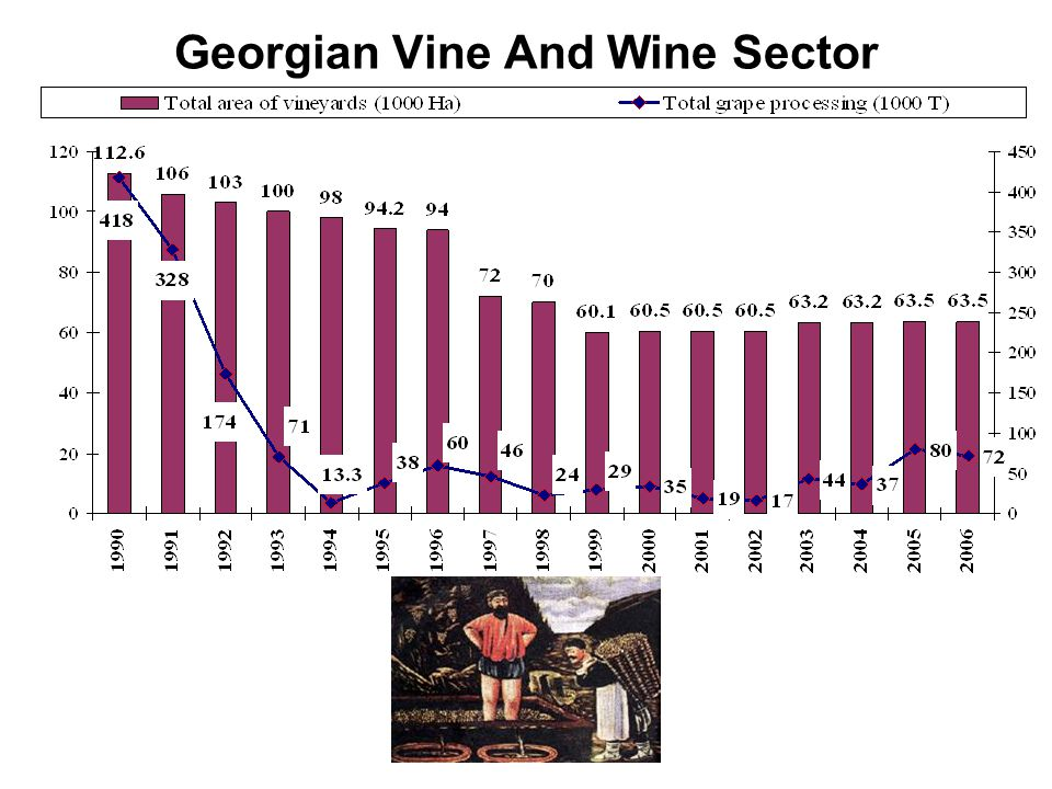 Georgian Vine And Wine Sector