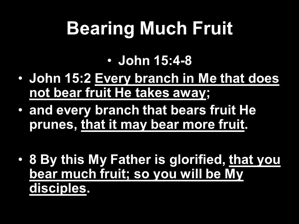 Bearing Much Fruit John 15:4-8
