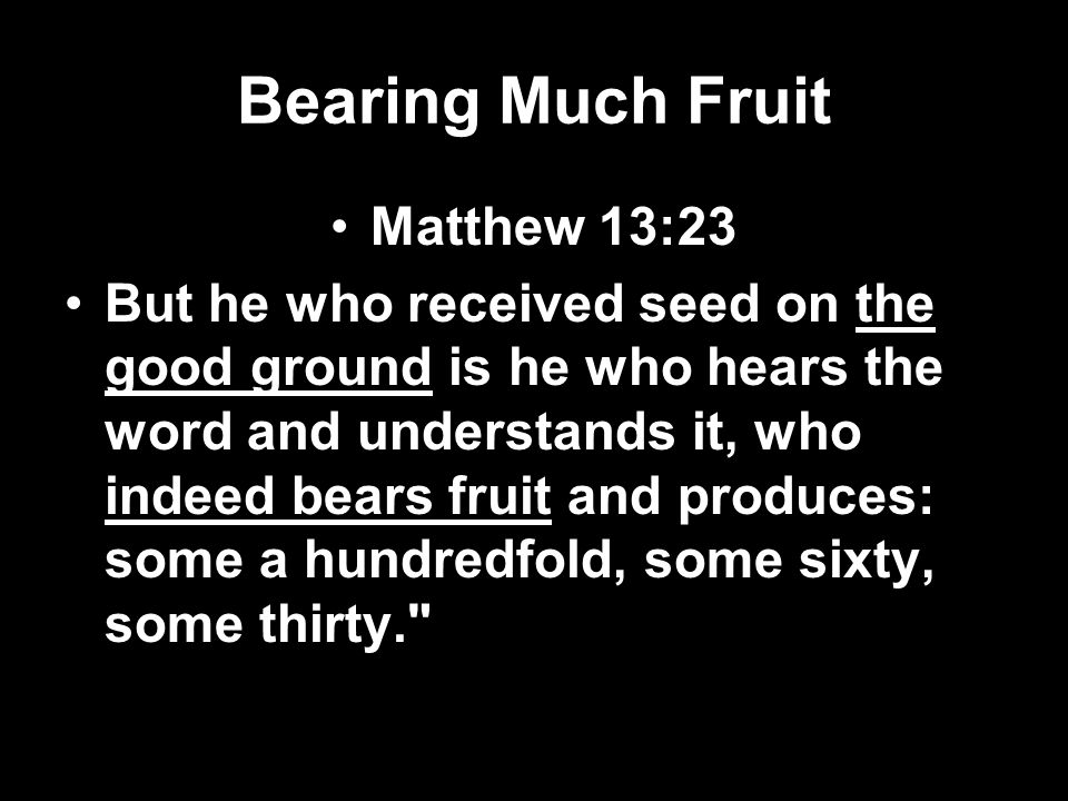 Bearing Much Fruit Matthew 13:23