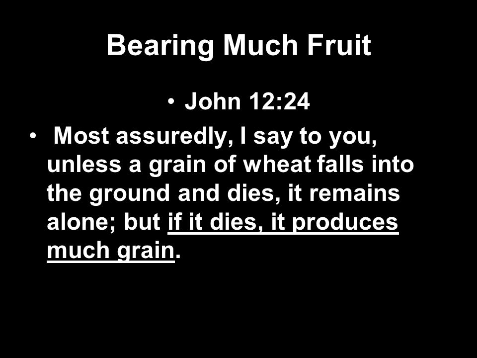 Bearing Much Fruit John 12:24