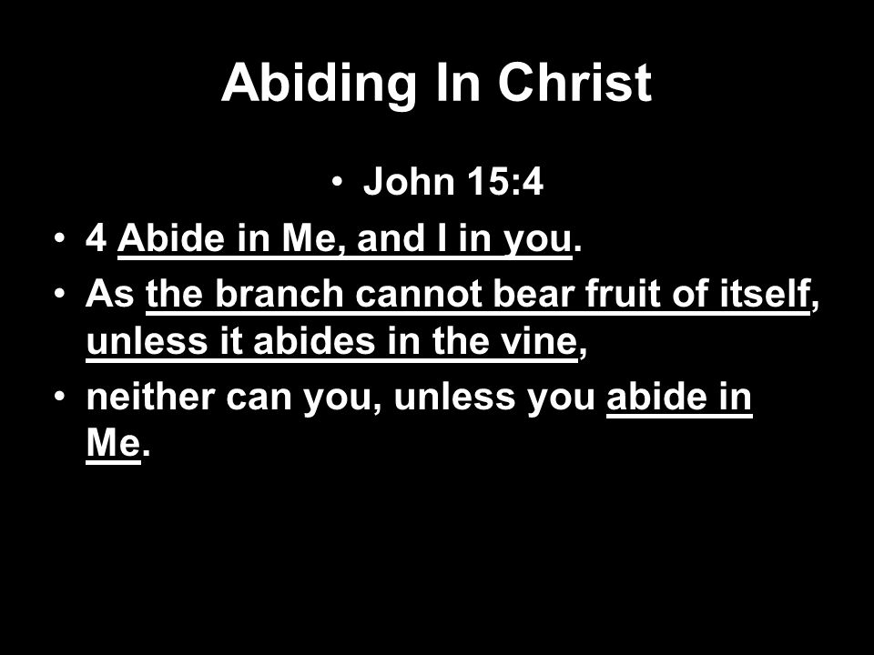 Abiding In Christ John 15:4 4 Abide in Me, and I in you.