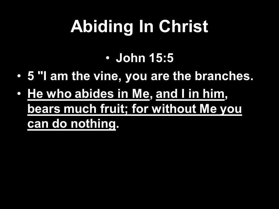 Abiding In Christ John 15:5 5 I am the vine, you are the branches.