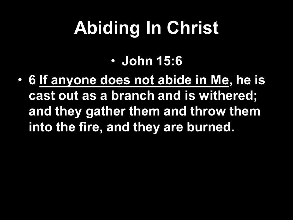 Abiding In Christ John 15:6