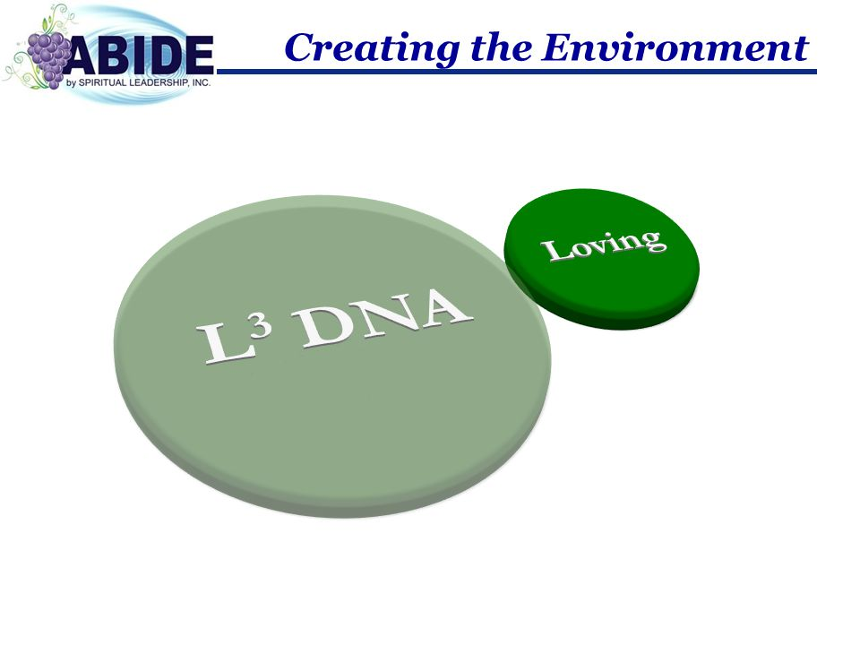 Creating the Environment