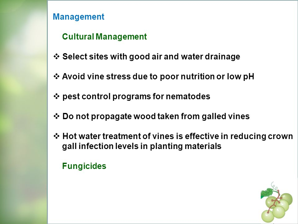 Management Cultural Management. Select sites with good air and water drainage. Avoid vine stress due to poor nutrition or low pH.