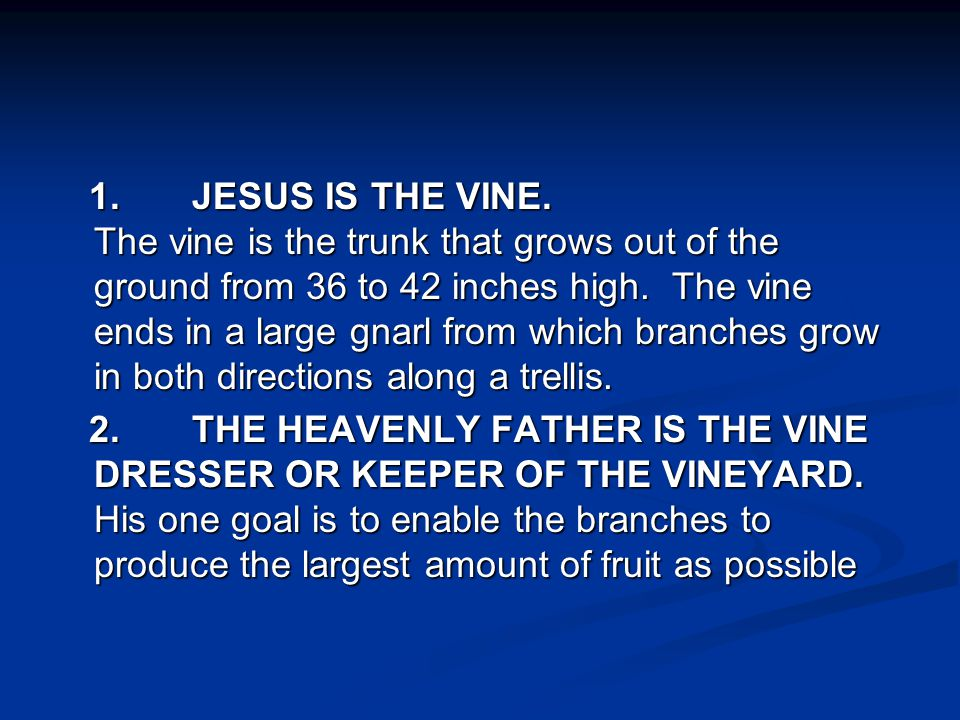 1. JESUS IS THE VINE. The vine is the trunk that grows out of the ground from 36 to 42 inches high. The vine ends in a large gnarl from which branches grow in both directions along a trellis.