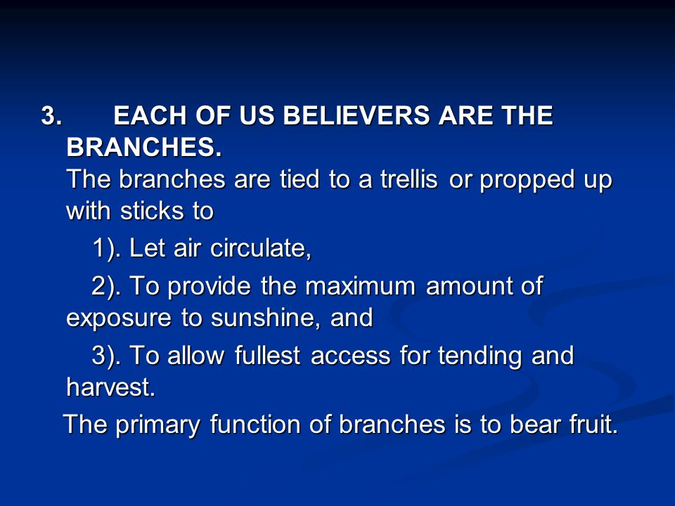 3. EACH OF US BELIEVERS ARE THE BRANCHES