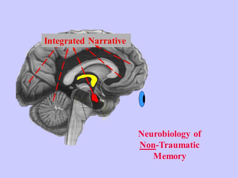 Neurobiology of Non-Traumatic Memory