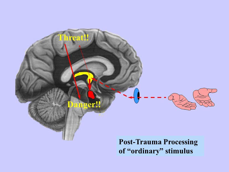 Threat!! Danger!! Post-Trauma Processing of ordinary stimulus