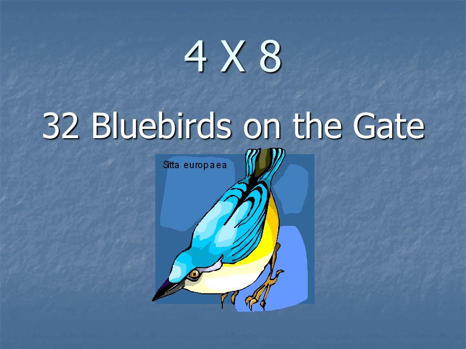 4 X 8 32 Bluebirds on the Gate
