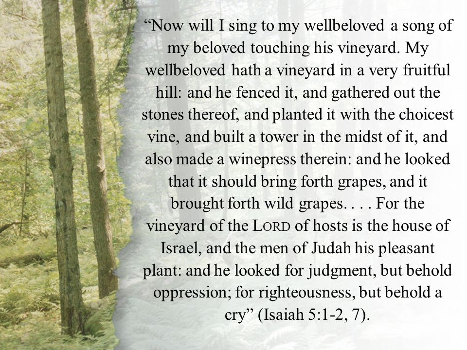 Now will I sing to my wellbeloved a song of my beloved touching his vineyard. My wellbeloved hath a vineyard in a very fruitful hill: and he fenced it, and gathered out the stones thereof, and planted it with the choicest vine, and built a tower in the midst of it, and also made a winepress therein: and he looked that it should bring forth grapes, and it brought forth wild grapes. . . . For the vineyard of the LORD of hosts is the house of Israel, and the men of Judah his pleasant plant: and he looked for judgment, but behold oppression; for righteousness, but behold a cry (Isaiah 5:1-2, 7).