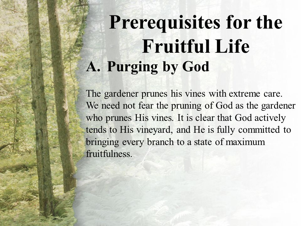 II. Prerequisites for the Fruitful Life (A-B)