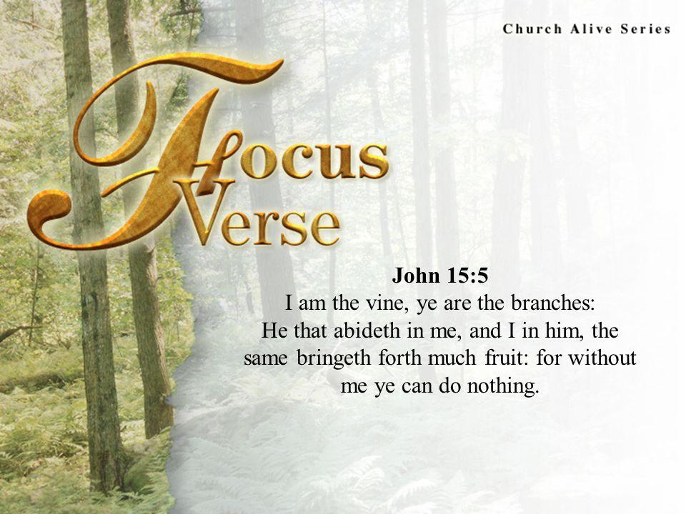 Focus Verse John 15:5.