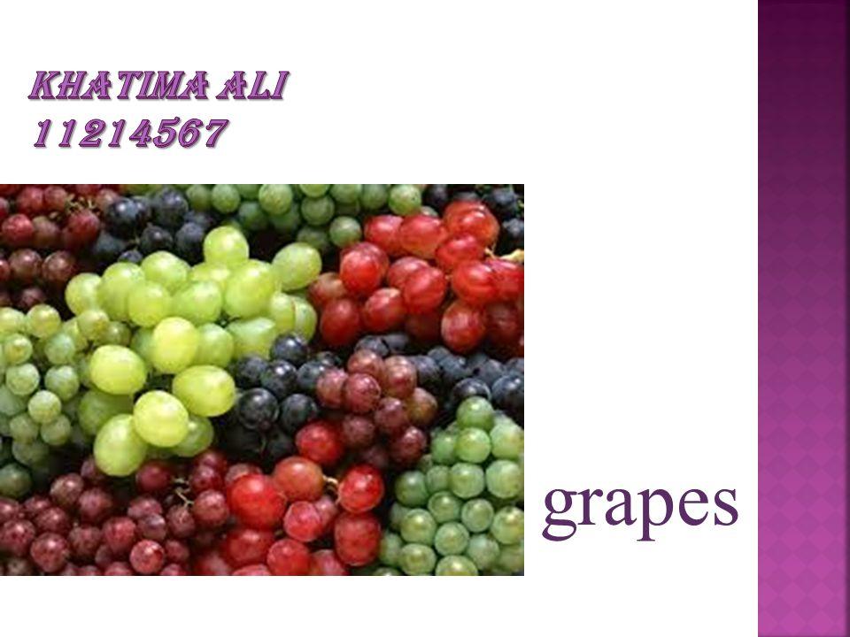 KHATIMA ALI 11214567 grapes