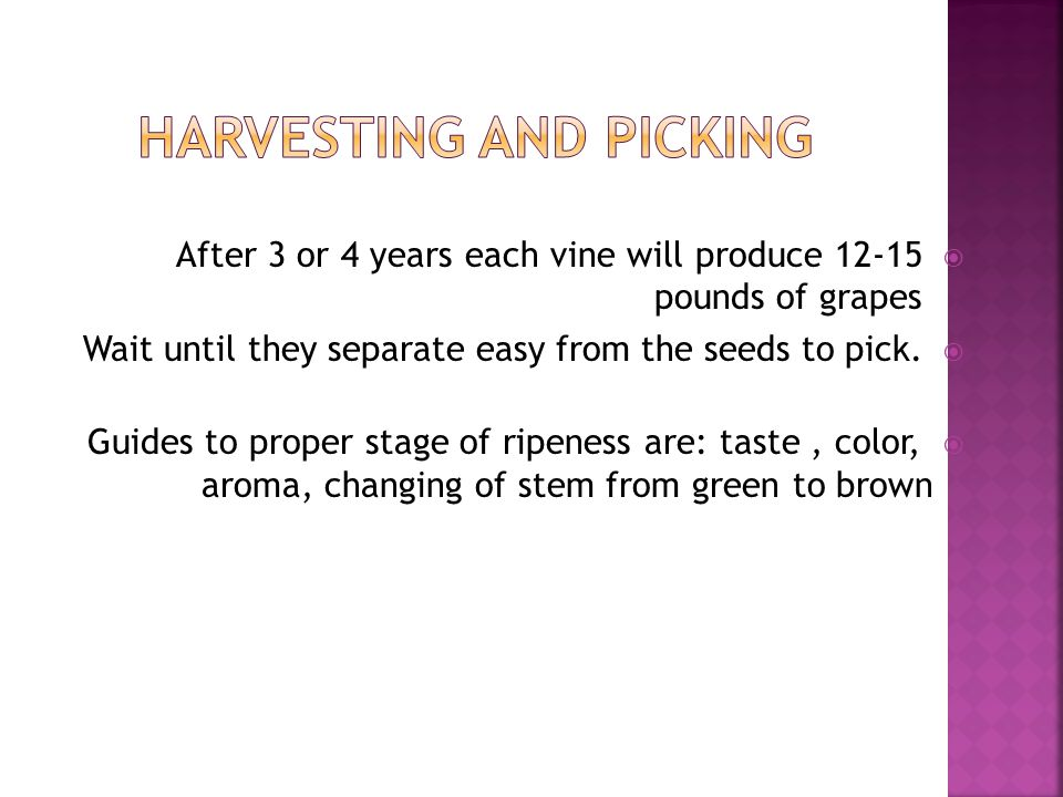 Harvesting and Picking