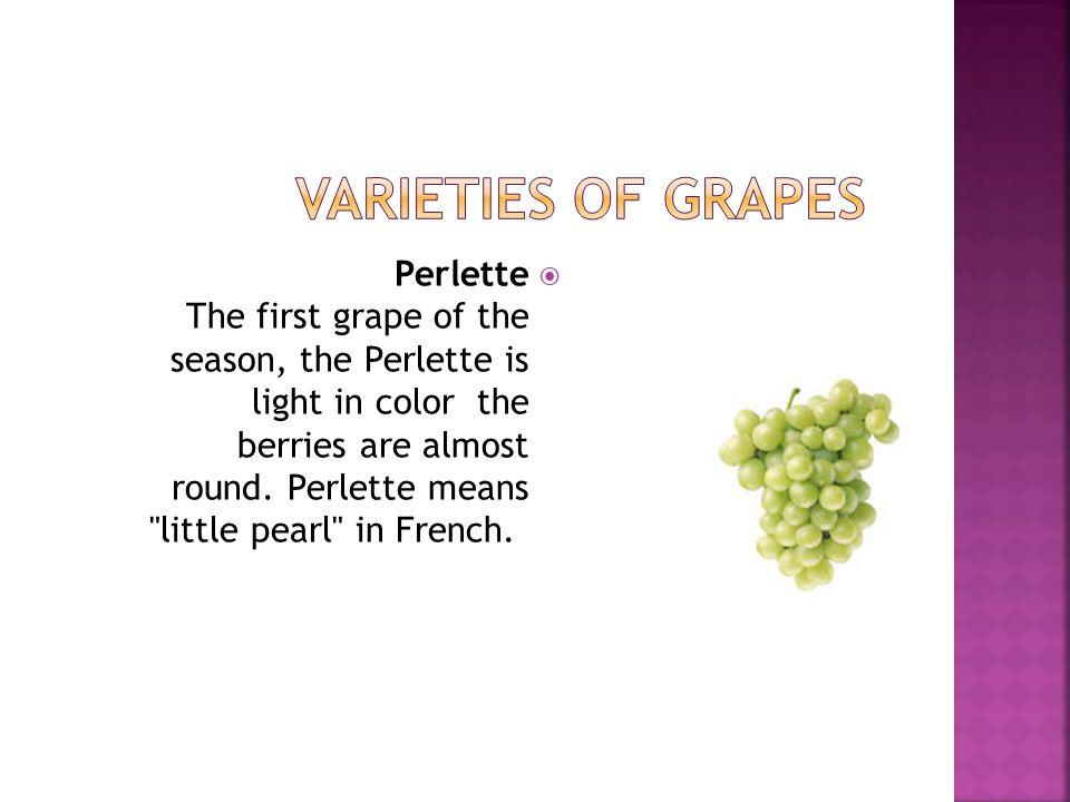Varieties of Grapes