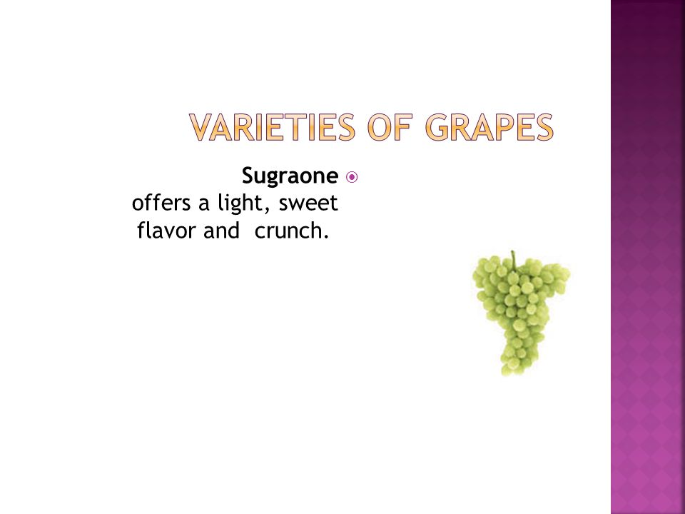 Varieties of Grapes Sugraone offers a light, sweet flavor and crunch.