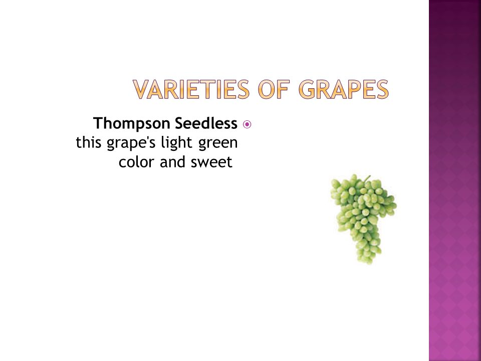 Varieties of Grapes Thompson Seedless this grape s light green color and sweet