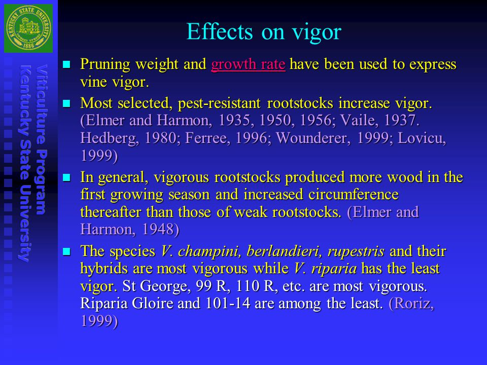 Effects on vigor Pruning weight and growth rate have been used to express vine vigor.