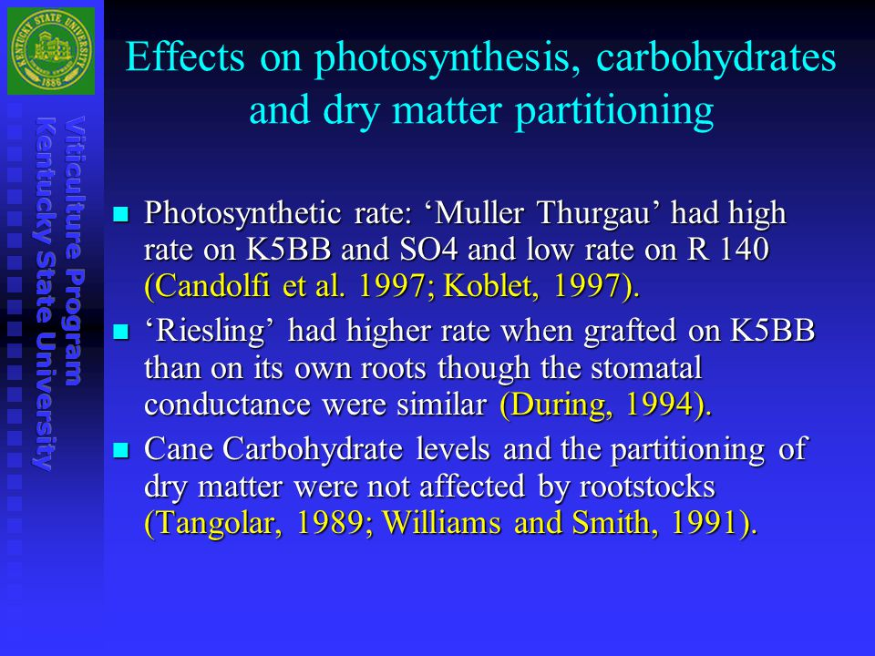 Effects on photosynthesis, carbohydrates and dry matter partitioning
