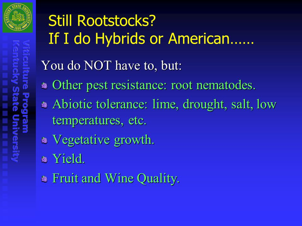 Still Rootstocks If I do Hybrids or American……