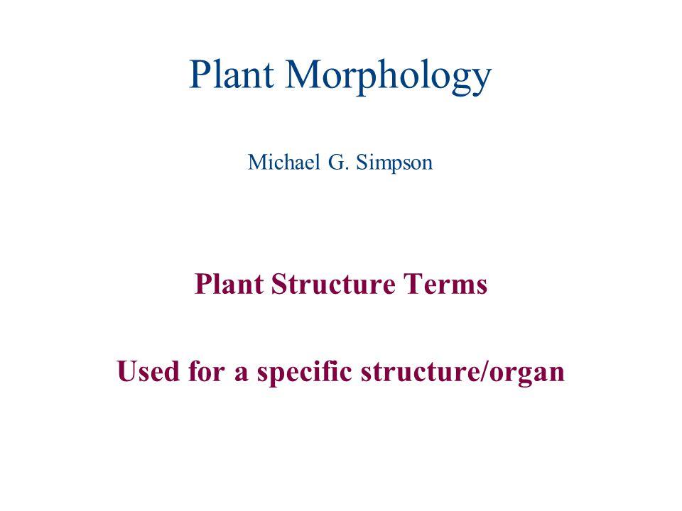 Plant Morphology Michael G. Simpson