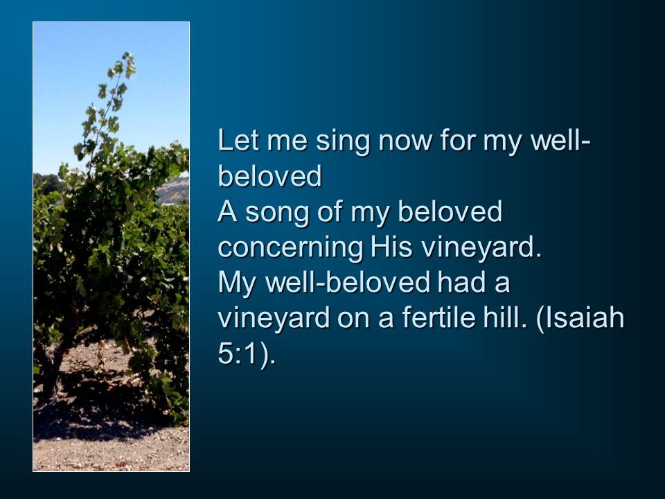 Let me sing now for my well-beloved A song of my beloved concerning His vineyard.