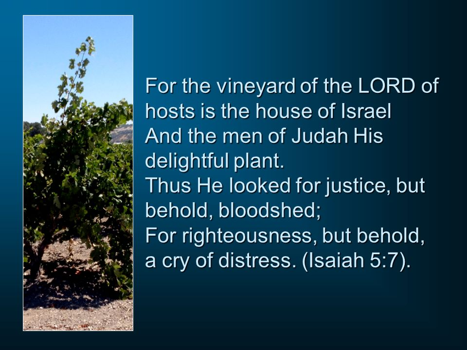 For the vineyard of the LORD of hosts is the house of Israel And the men of Judah His delightful plant.