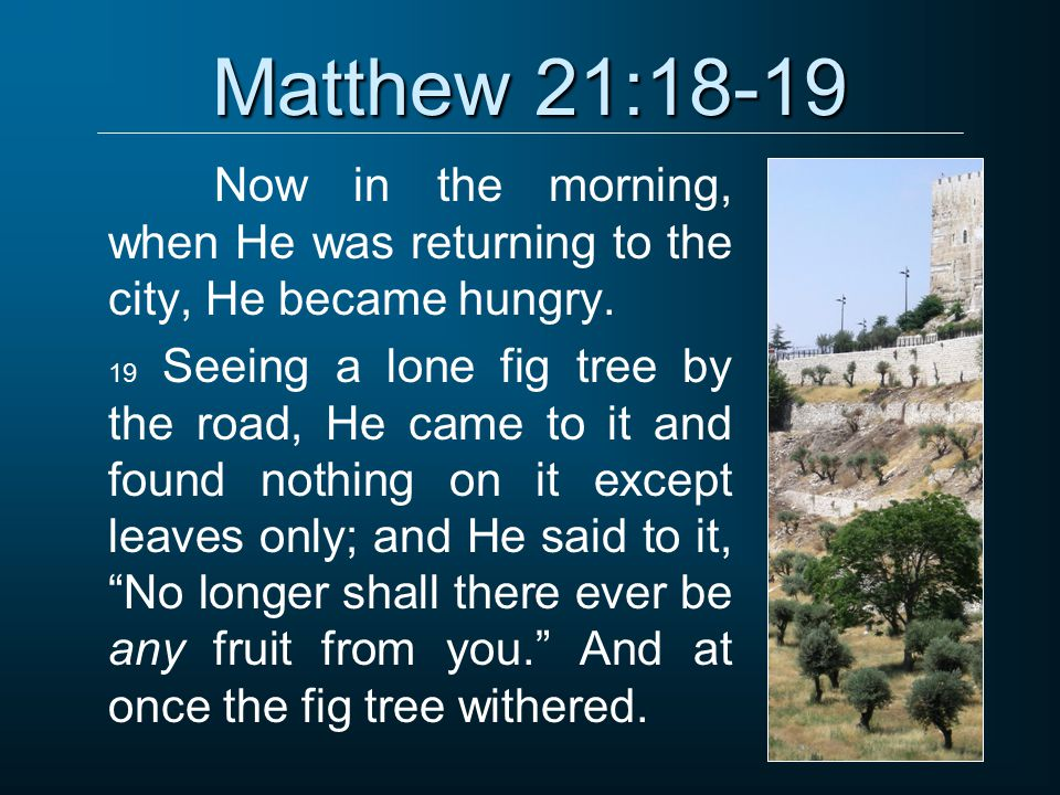 Matthew 21:18-19 Now in the morning, when He was returning to the city, He became hungry.