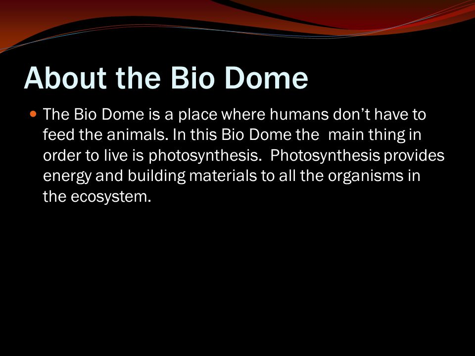 About the Bio Dome