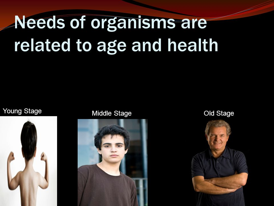 Needs of organisms are related to age and health